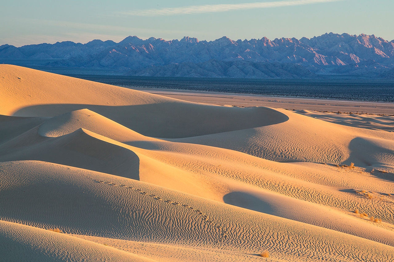 1280px-Mojave_Trails_National_Monument_dunes